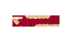 Kim Handysides Voice Over Artist Concordia logo